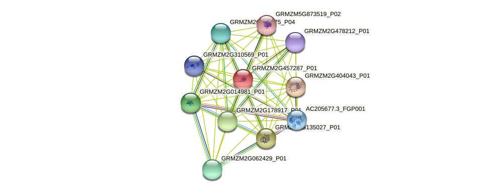 Zm.86150 protein (Zea mays) - STRING interaction network