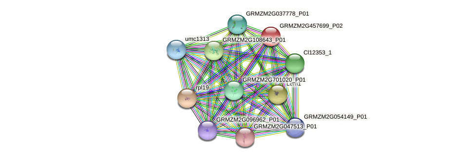 GRMZM2G457699_P01 protein (Zea mays) - STRING interaction network