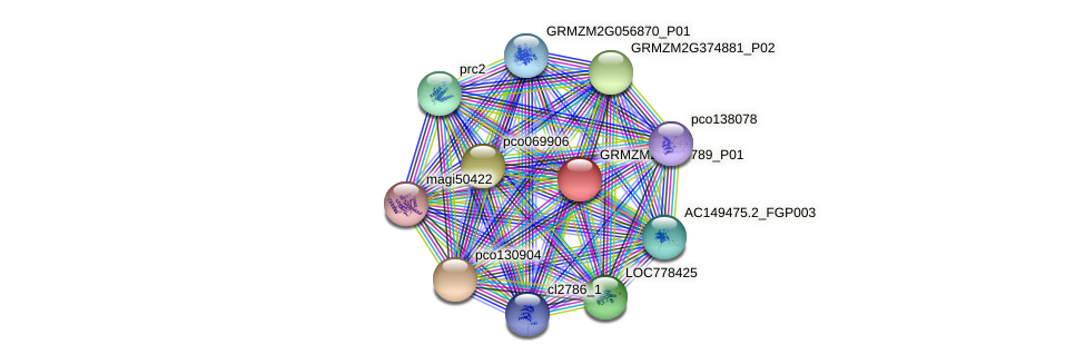 GRMZM2G457789_P01 protein (Zea mays) - STRING interaction network