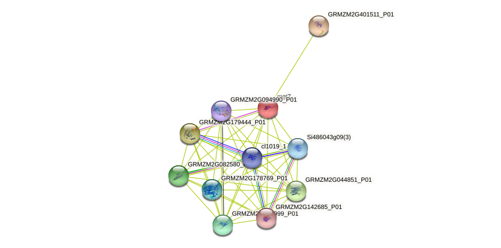 GRMZM2G458879_P01 protein (Zea mays) - STRING interaction network