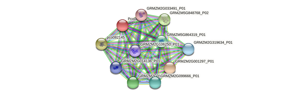 GRMZM2G459755_P01 protein (Zea mays) - STRING interaction network