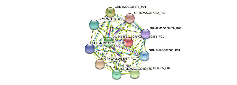 GRMZM2G459861_P01 protein (Zea mays) - STRING interaction network