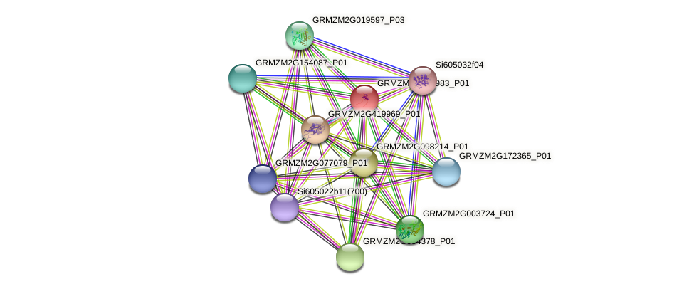 GRMZM2G463983_P01 protein (Zea mays) - STRING interaction network