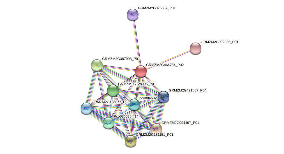 103635990 protein (Zea mays) - STRING interaction network