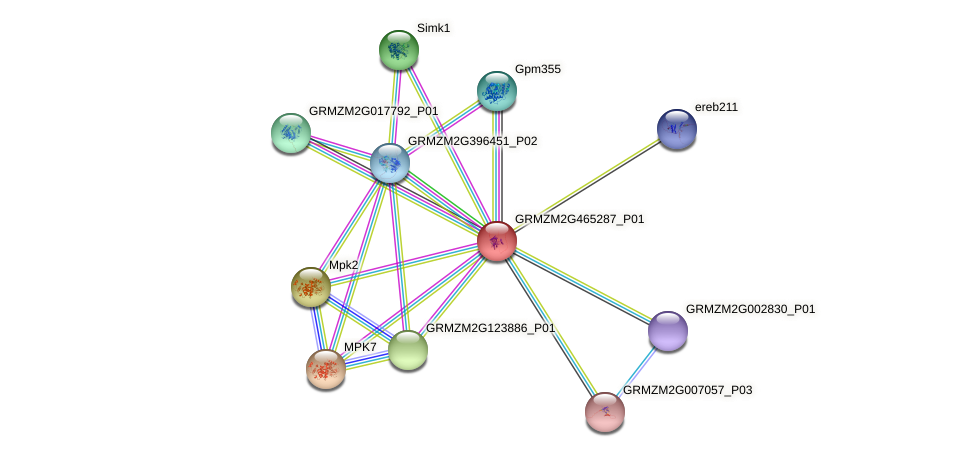 Zm.97433 protein (Zea mays) - STRING interaction network
