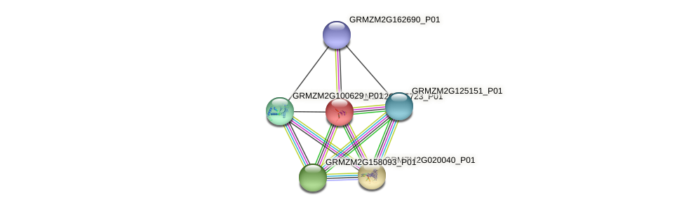 GRMZM2G465723_P01 protein (Zea mays) - STRING interaction network