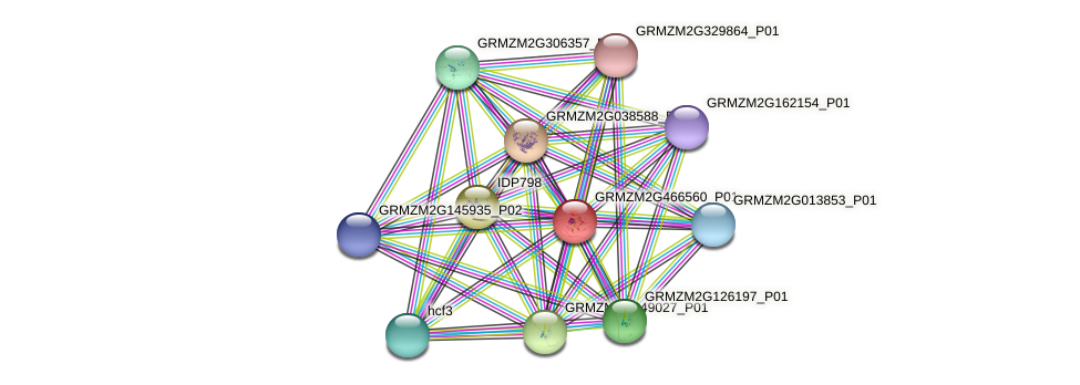 103647268 protein (Zea mays) - STRING interaction network