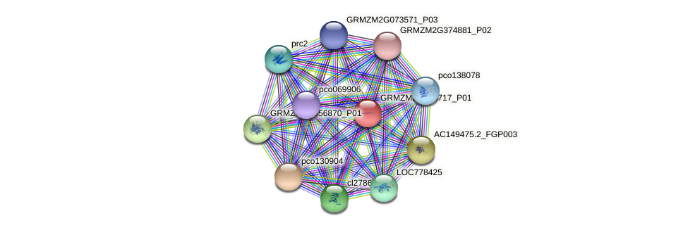 GRMZM2G468717_P01 protein (Zea mays) - STRING interaction network