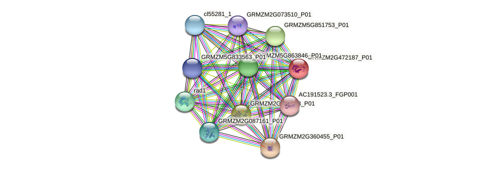 GRMZM2G472187_P01 protein (Zea mays) - STRING interaction network