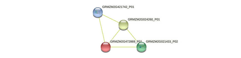 Zm.61196 protein (Zea mays) - STRING interaction network
