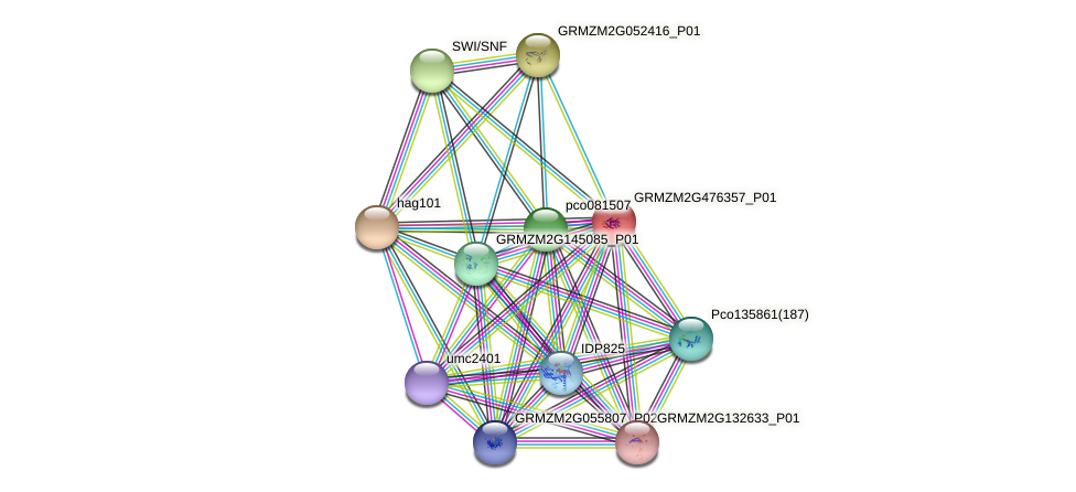 GRMZM2G476357_P01 protein (Zea mays) - STRING interaction network