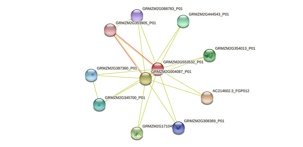GRMZM2G553532_P01 protein (Zea mays) - STRING interaction network