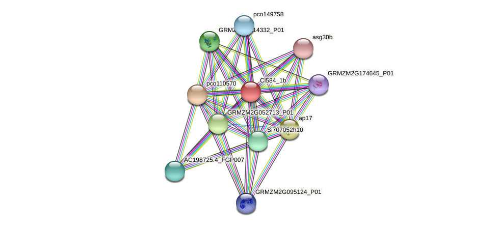 GRMZM2G700148_P01 protein (Zea mays) - STRING interaction network