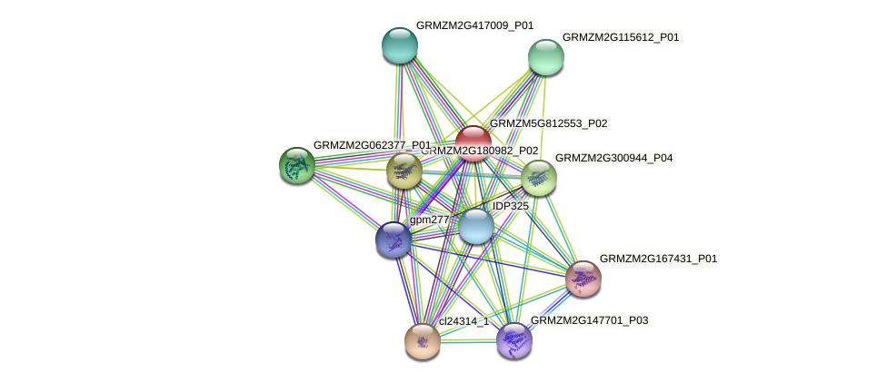 pco078090 protein (Zea mays) - STRING interaction network