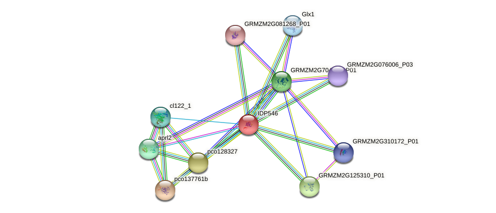 IDP546 protein (Zea mays) - STRING interaction network