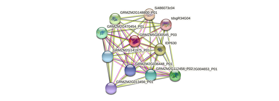 GRMZM5G830545_P03 protein (Zea mays) - STRING interaction network