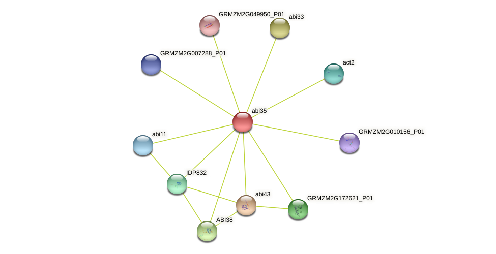 Zm.86419 protein (Zea mays) - STRING interaction network