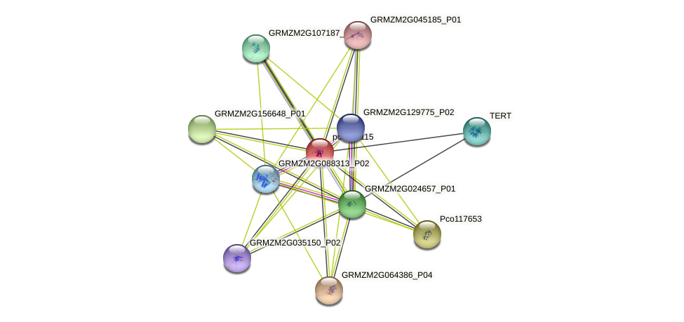 pco067115 protein (Zea mays) - STRING interaction network