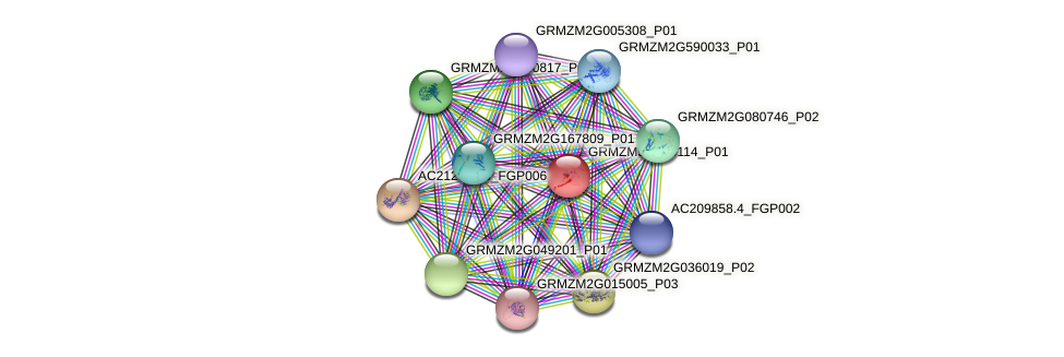 GRMZM5G839114_P01 protein (Zea mays) - STRING interaction network