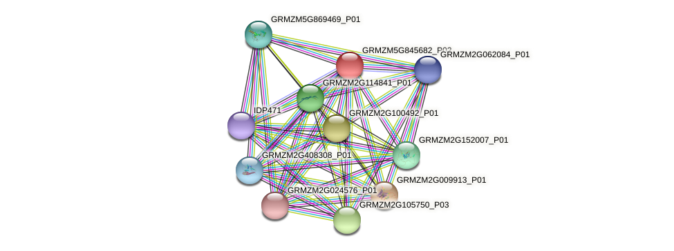 GRMZM5G845682_P02 protein (Zea mays) - STRING interaction network