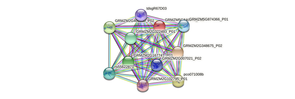 Zm.67895 protein (Zea mays) - STRING interaction network