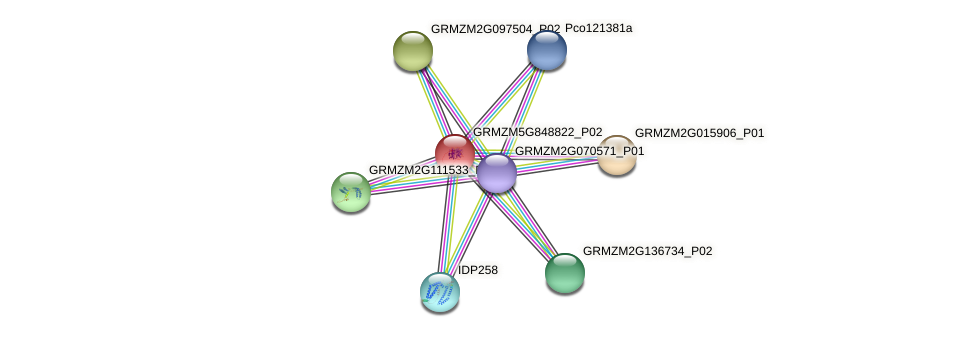 103627659 protein (Zea mays) - STRING interaction network