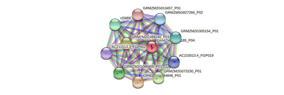 GRMZM5G852185_P04 protein (Zea mays) - STRING interaction network