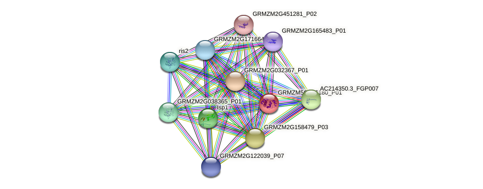 Zm.67548 protein (Zea mays) - STRING interaction network