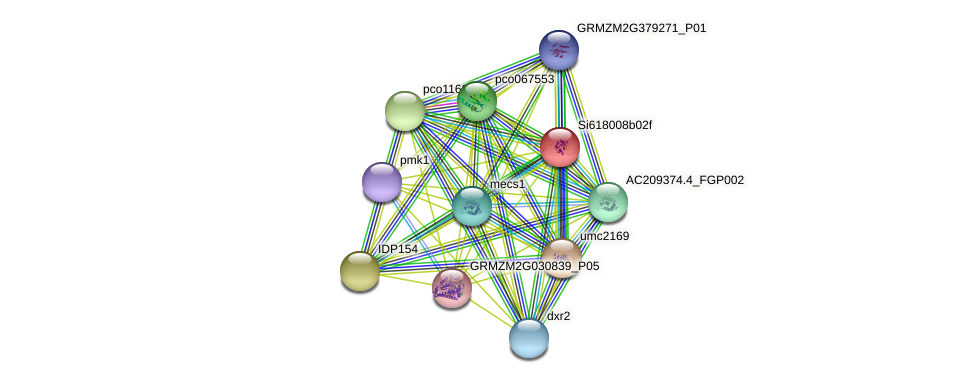 GRMZM5G856881_P01 protein (Zea mays) - STRING interaction network