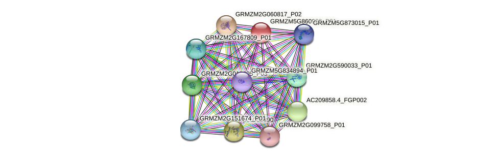 GRMZM5G860938_P01 protein (Zea mays) - STRING interaction network