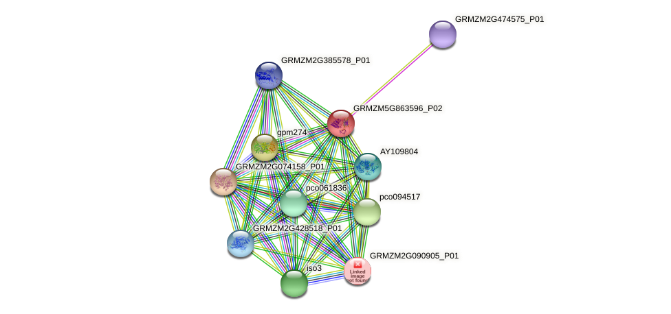 Zm.6894 protein (Zea mays) - STRING interaction network
