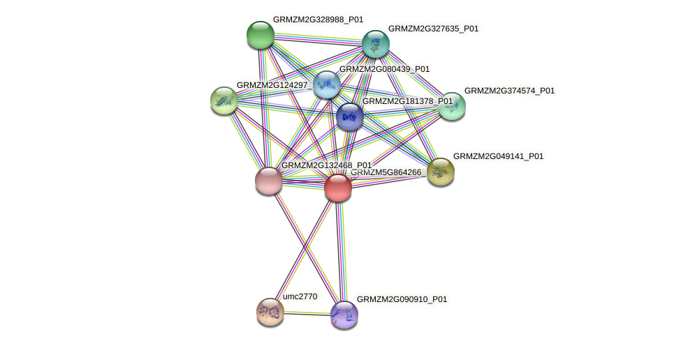 GRMZM5G864266_P01 protein (Zea mays) - STRING interaction network