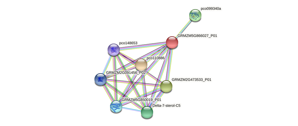 GRMZM5G866027_P01 protein (Zea mays) - STRING interaction network