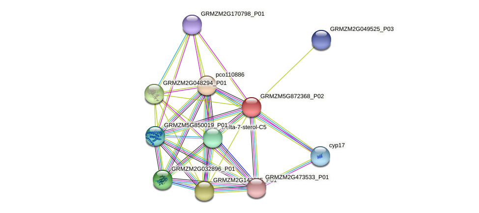 GRMZM5G872368_P02 protein (Zea mays) - STRING interaction network