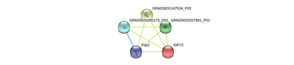 IDP72 protein (Zea mays) - STRING interaction network