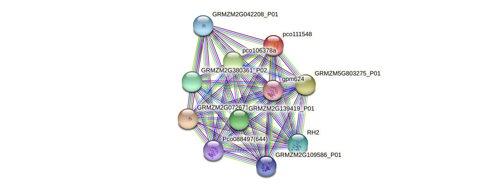 pco111548 protein (Zea mays) - STRING interaction network