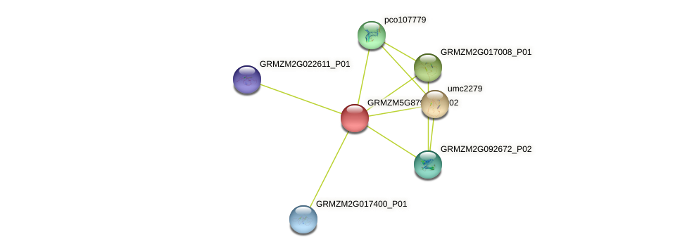 GRMZM5G879278_P02 protein (Zea mays) - STRING interaction network