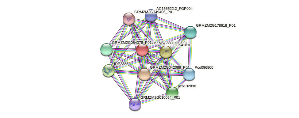 GRMZM5G883149_P04 protein (Zea mays) - STRING interaction network