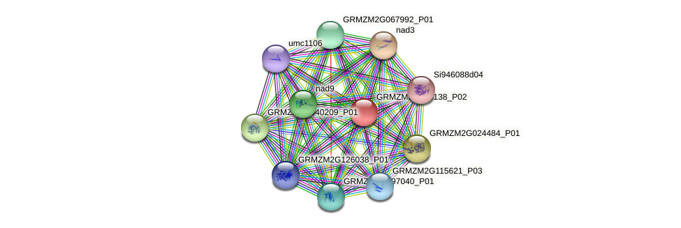 nad7 protein (Zea mays) - STRING interaction network