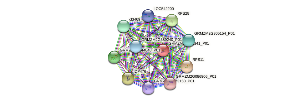 ZemaCp058 protein (Zea mays) - STRING interaction network
