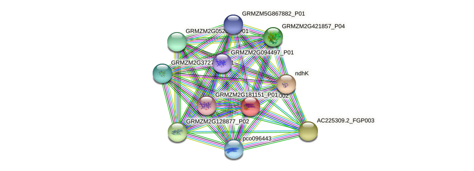 pco086002 protein (Zea mays) - STRING interaction network