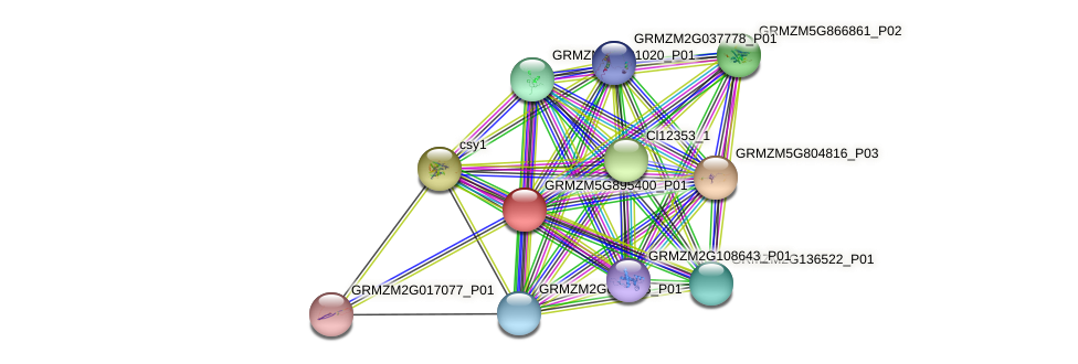 GRMZM5G895400_P01 protein (Zea mays) - STRING interaction network