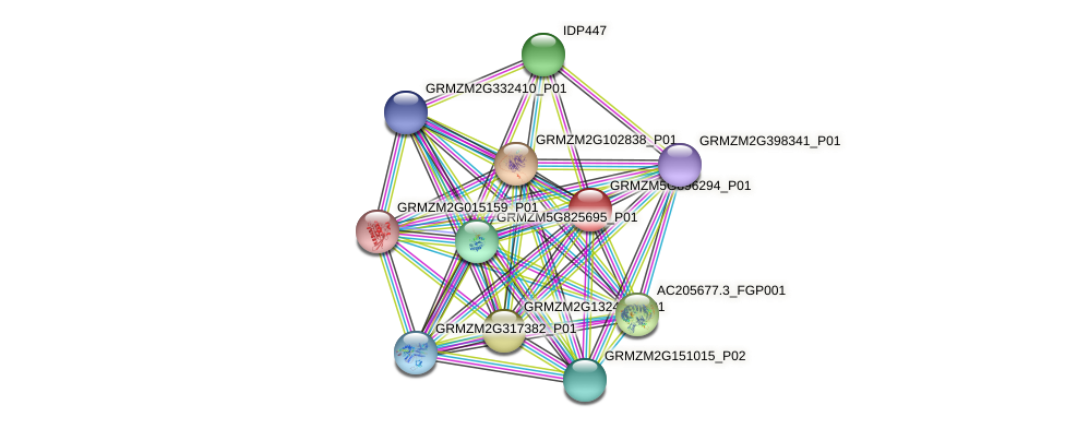 Zm.151940 protein (Zea mays) - STRING interaction network
