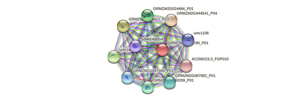 GRMZM5G896790_P01 protein (Zea mays) - STRING interaction network