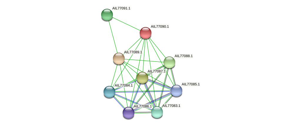 AIL77090.1 protein (Acinetobacter baumannii) - STRING interaction network