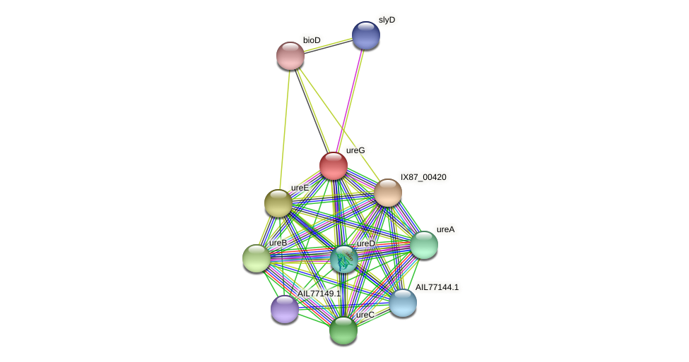 AIL77145.1 protein (Acinetobacter baumannii) - STRING interaction network