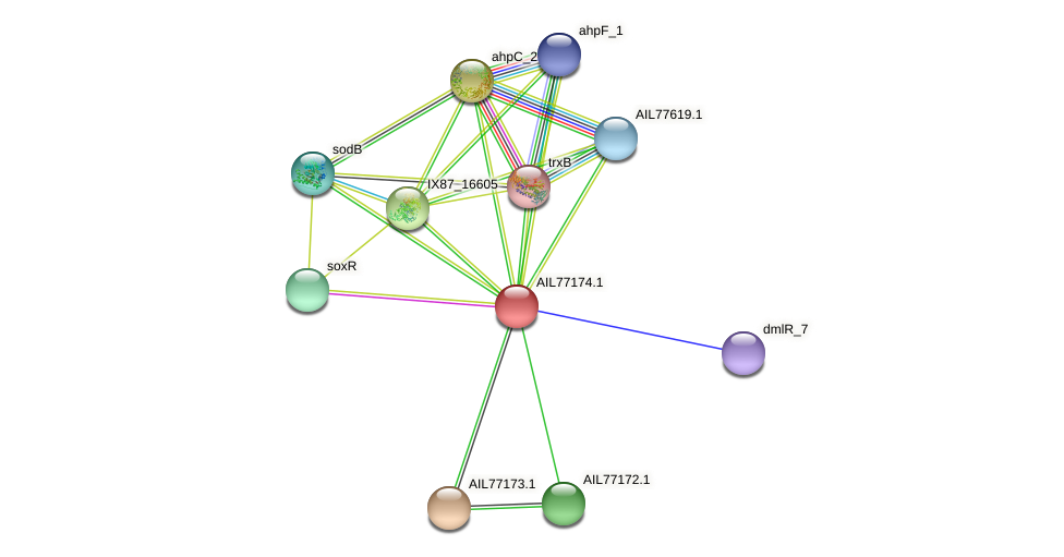 AIL77174.1 protein (Acinetobacter baumannii) - STRING interaction network