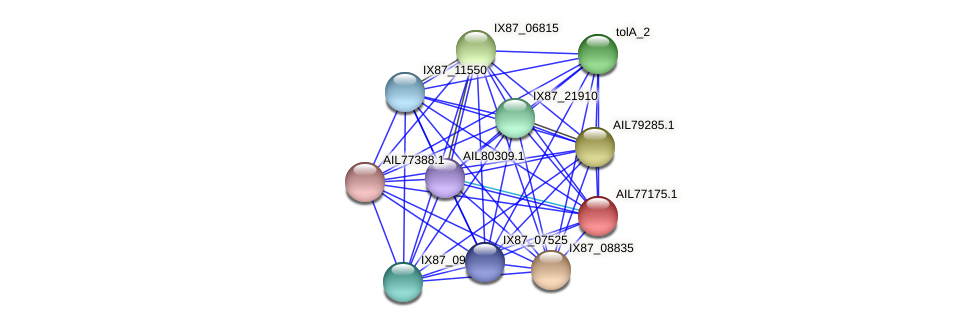 AIL77175.1 protein (Acinetobacter baumannii) - STRING interaction network