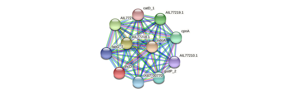 AIL77215.1 protein (Acinetobacter baumannii) - STRING interaction network