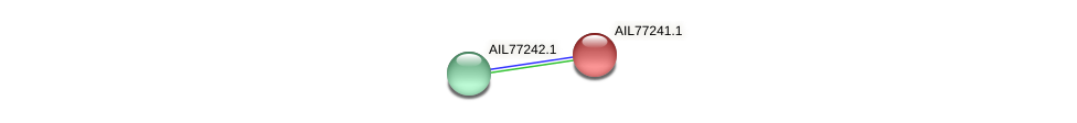 AIL77241.1 protein (Acinetobacter baumannii) - STRING interaction network